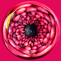 Crabapples - Spherical I
